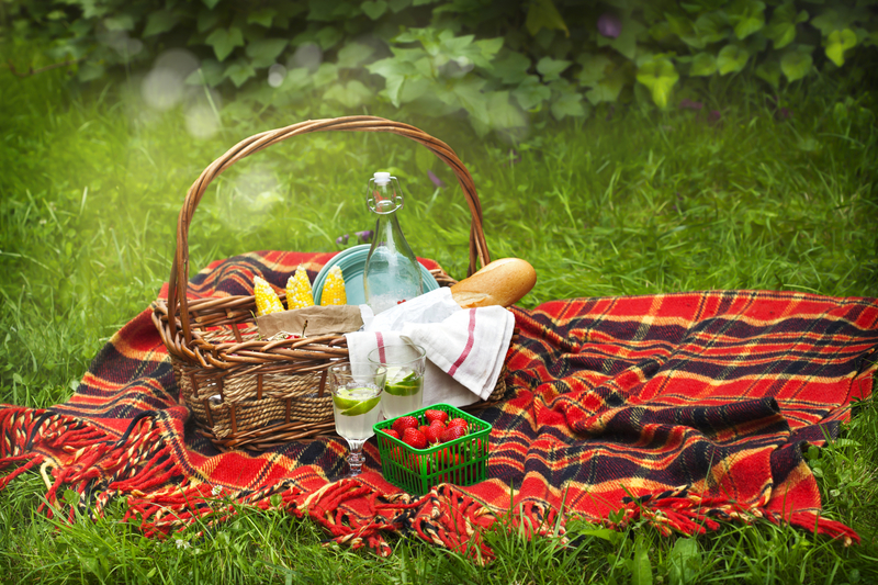 http://www.dreamstime.com/stock-images-picnic-basket-berries-lemonade-corn-bread-fresh-image56380264